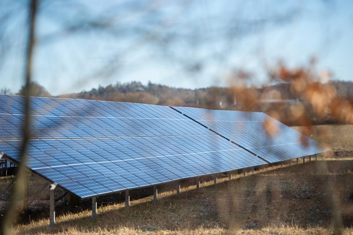 En rad solceller i solcellspark med suddiga bruna blad i förgrunden